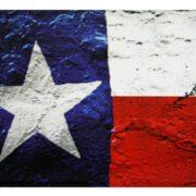 Magnet - Texas Flag