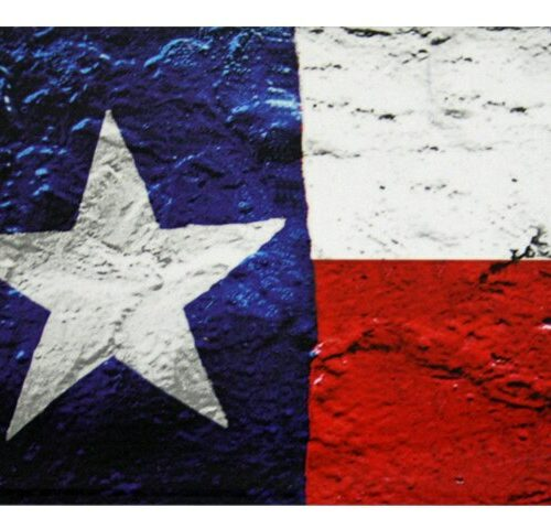 Magnet - Texas Flag